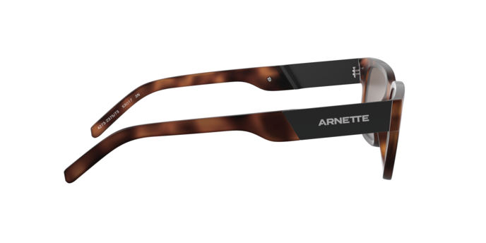 Arnette 4273 POST MALONE 237573 360 view