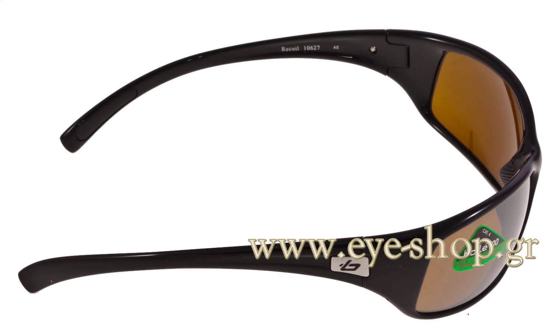 79bac99f8da Bolle Cat Eye Sunglasses - Bitterroot Public Library